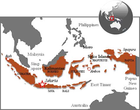 Indonesia (in brown colour) and the surrounding land masses