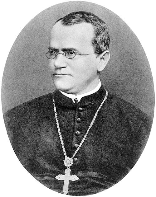 Abbot Gregor Mendel O.S.A., born 1822, priesthood 1847, died 1884